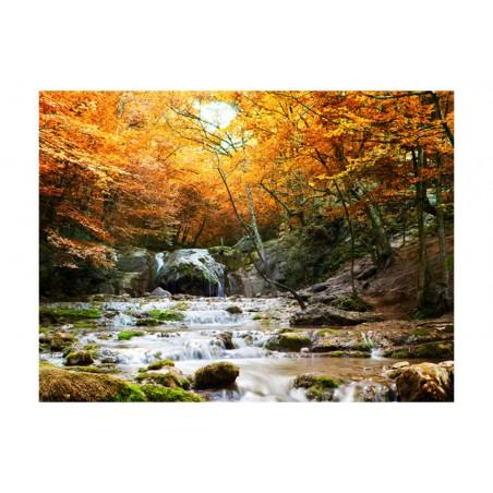 Fotomurale - autunno - cascata - Quadri e decorazioni
