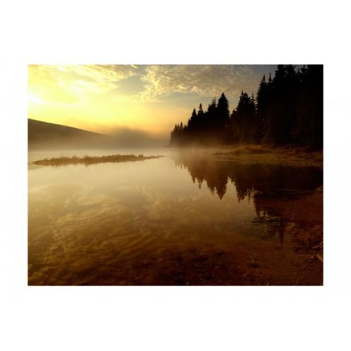 Fotomurale - Bosco e lago - Quadri e decorazioni