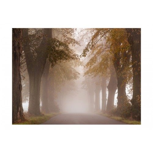 Fotomurale - Vicolo cieco nebbioso - Quadri e decorazioni