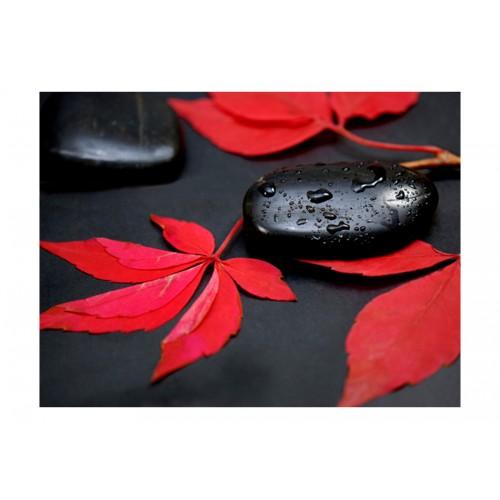 Fotomurale - Rosso intenso - Quadri e decorazioni