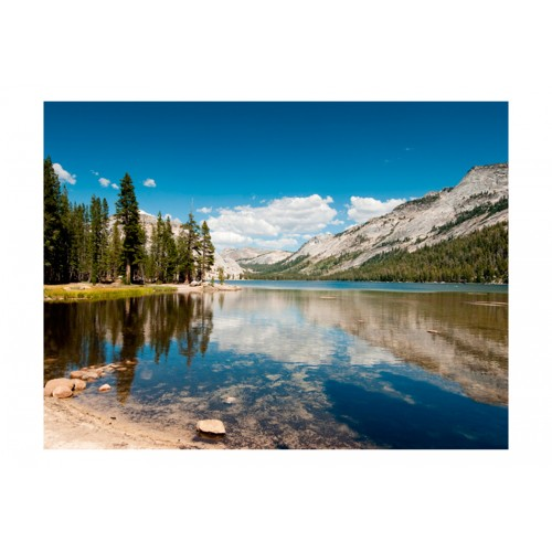 Fotomurale - Tenaya Lake - Yosemite National Park - Quadri e decorazioni