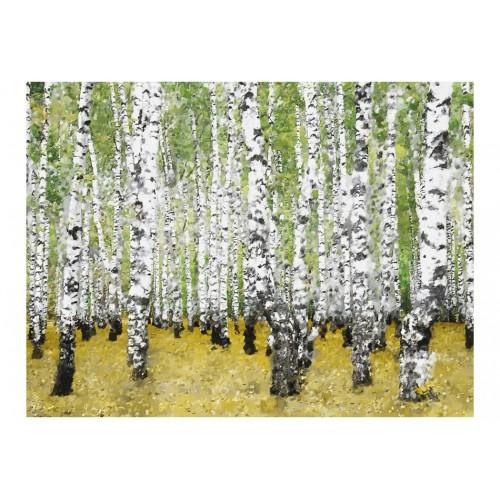 Fotomurale - Nel boschetto di betulle... - Quadri e decorazioni