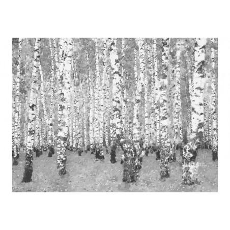 Fotomurale - Isolamento della betulla - Quadri e decorazioni