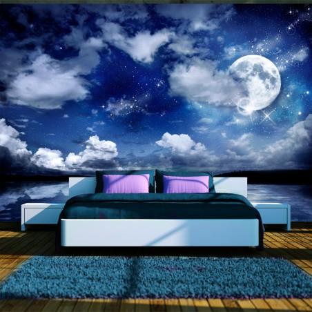 Fotomurale - Notte magica - Quadri e decorazioni