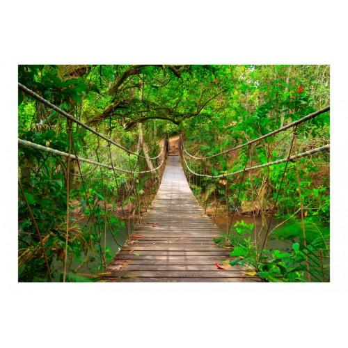 Fotomurale - Ponte tra il verde - Quadri e decorazioni