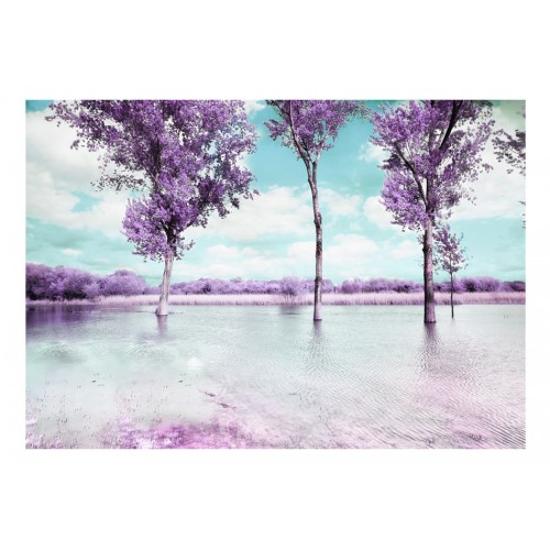 Fotomurale - Heather paesaggio - Quadri e decorazioni