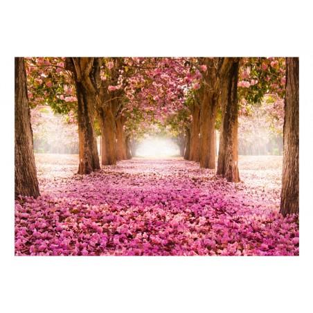 Fotomurale - Boschetto rosa - Quadri e decorazioni