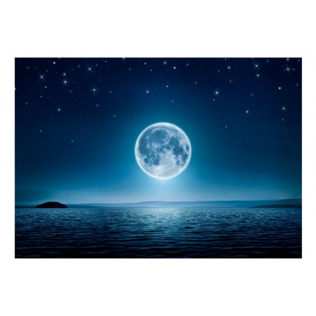 Fotomurale - Moonlit night - Quadri e decorazioni