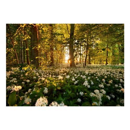 Fotomurale - Forest flora - Quadri e decorazioni