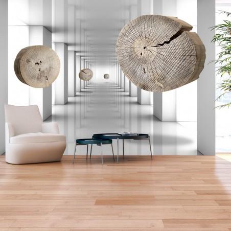 Fotomurale - Inventive Corridor - Quadri e decorazioni