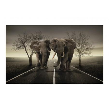 Fotomurale - Città di elefanti - Quadri e decorazioni