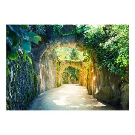 Fotomurale - Via naturae - Quadri e decorazioni
