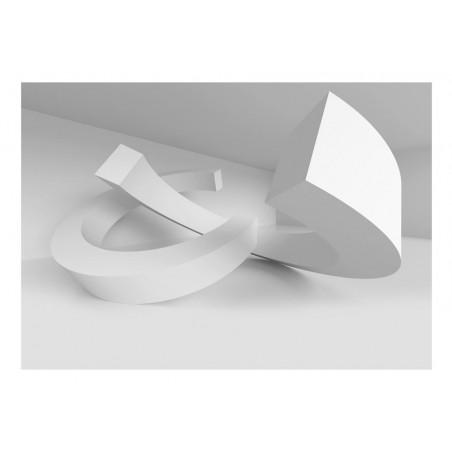 Fotomurale - White Duet - Quadri e decorazioni