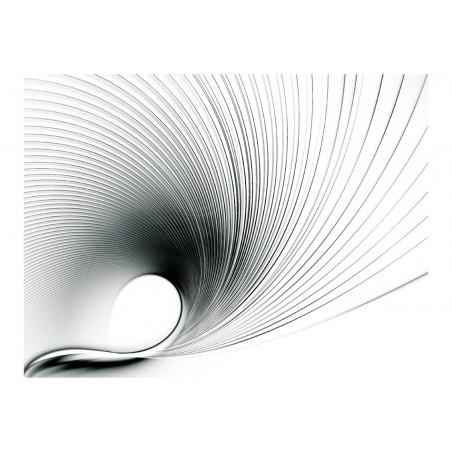 Fotomurale - Abstract fan - Quadri e decorazioni