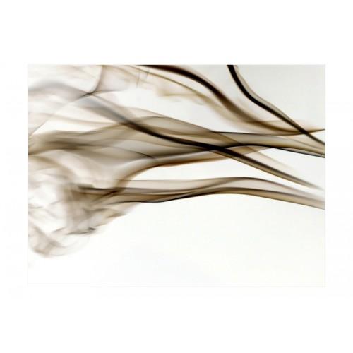 Fotomurale - fumo - astratto - Quadri e decorazioni