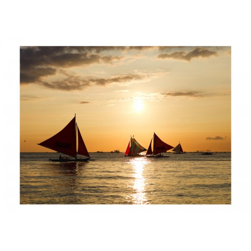 Fotomurale - barche a vela - tramonto - Quadri e decorazioni