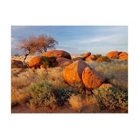 Fotomurale - Paesaggio africano, Namibia - Quadri e decorazioni