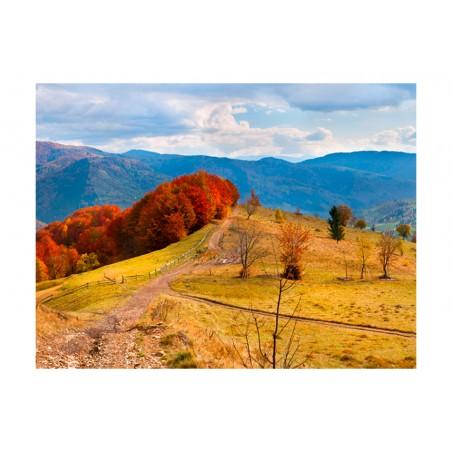 Fotomurale - Colori d'autunno nei Carpazi - Quadri e decorazioni