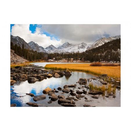 Fotomurale - Mountain stream - Quadri e decorazioni
