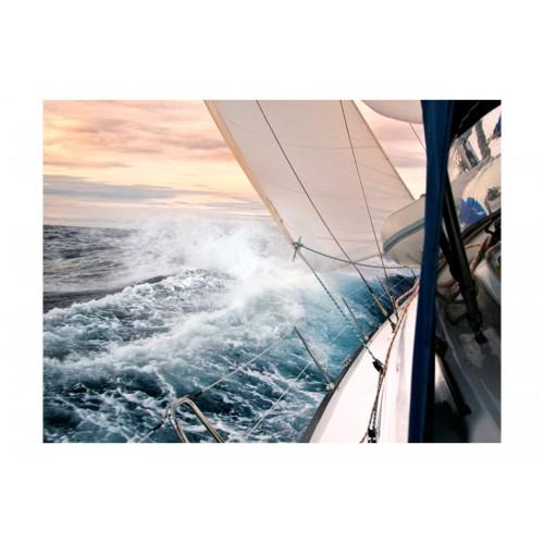 Fotomurale - Sailing - Quadri e decorazioni