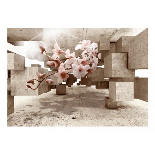 Fotomurale - Little Miracles - Quadri e decorazioni