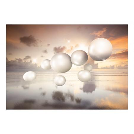 Fotomurale - Morning Jewels - Quadri e decorazioni