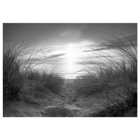 Fotomurale - beach (black and white) - Quadri e decorazioni