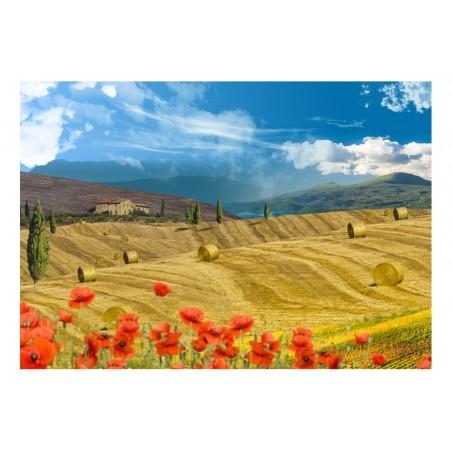 Fotomurale - Paesaggio autunnale - Quadri e decorazioni