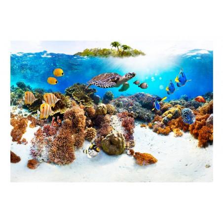 Fotomurale - Banco corallino - Quadri e decorazioni