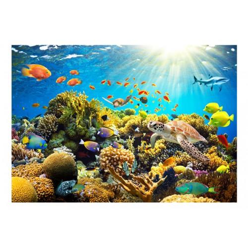 Fotomurale - Terreni sott'acqua - Quadri e decorazioni