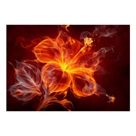 Fotomurale - Fiore ardente - Quadri e decorazioni