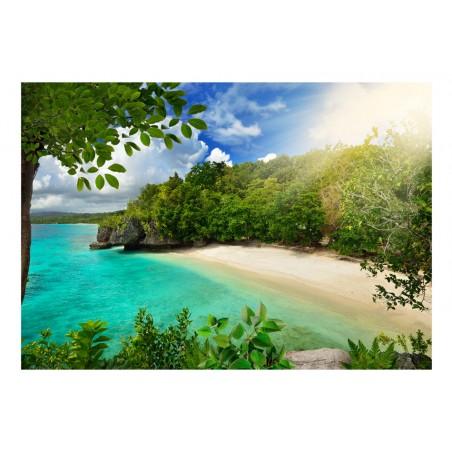 Fotomurale - Spiaggia soleggiata - Quadri e decorazioni