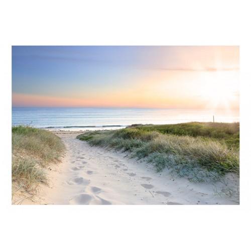 Fotomurale - Morning walk on the beach - Quadri e decorazioni