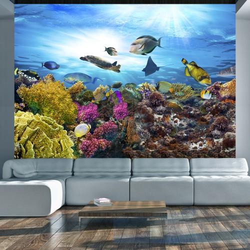 Fotomurale - Coral reef - Quadri e decorazioni