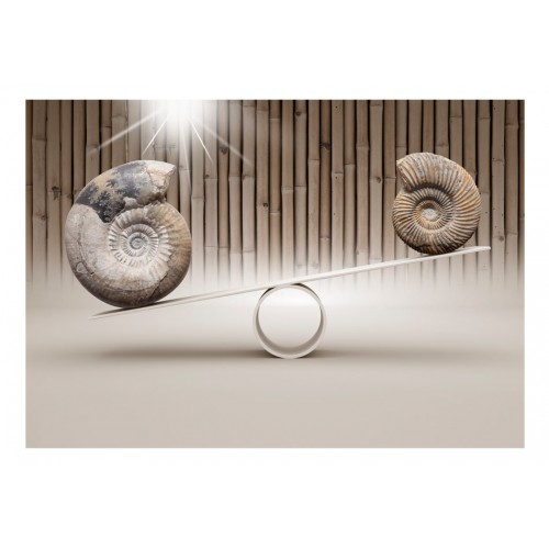 Fotomurale - Fun with Fossils - Quadri e decorazioni