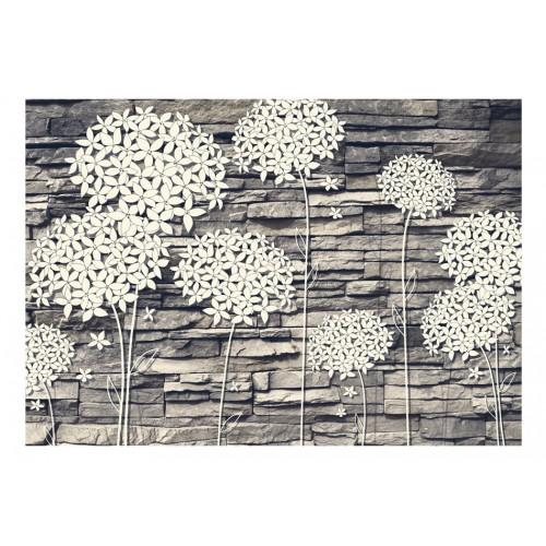 Fotomurale - Stones Flowers - Quadri e decorazioni
