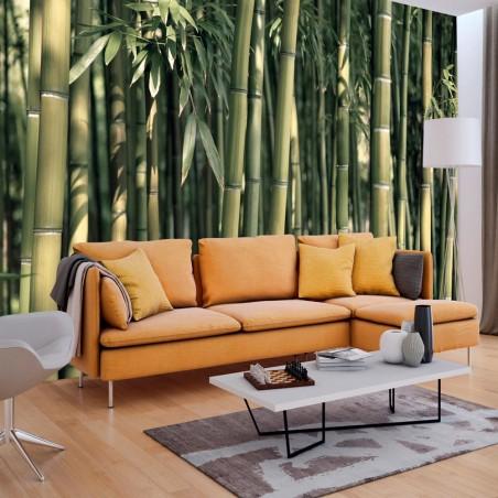 Fotomurale - Bamboo Exotic - Quadri e decorazioni