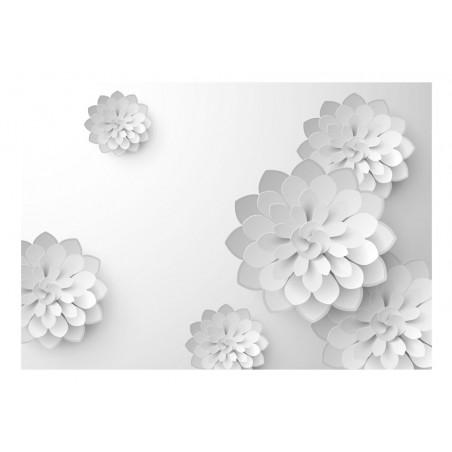 Fotomurale - White Garden - Quadri e decorazioni
