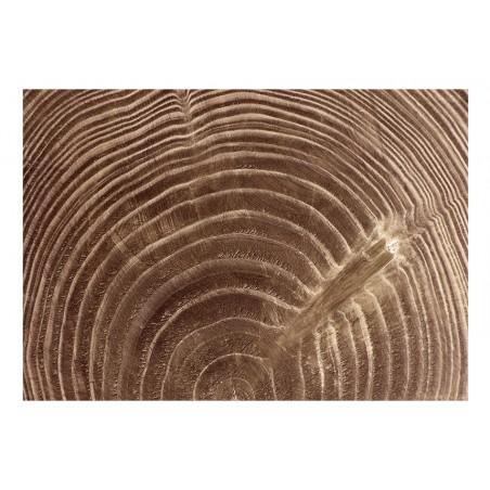Fotomurale - Albero crudo - Quadri e decorazioni