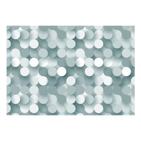 Fotomurale - In The Net of Grey - Quadri e decorazioni