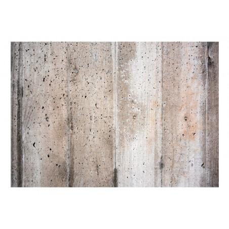 Fotomurale - Old Concrete - Quadri e decorazioni