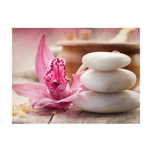 Fotomurale - Zen e spa - Quadri e decorazioni