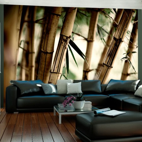 Fotomurale - Fog and bamboo forest - Quadri e decorazioni