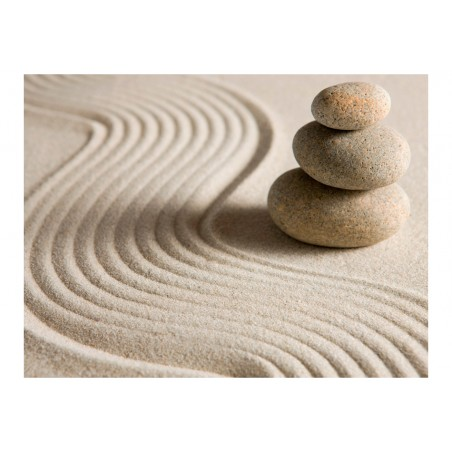 Fotomurale - Equilibrio - Quadri e decorazioni