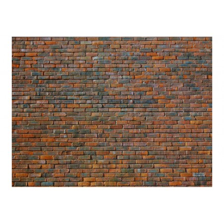 Fotomurale - Muro di mattoncini - Quadri e decorazioni