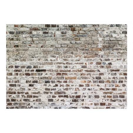 Fotomurale - Old Walls - Quadri e decorazioni