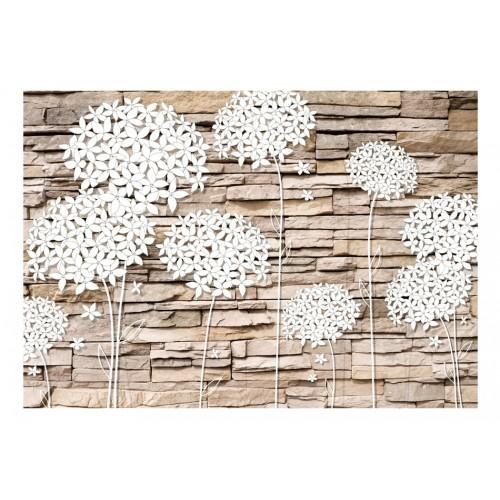 Fotomurale - Composizione di fiori sul muro - Quadri e decorazioni