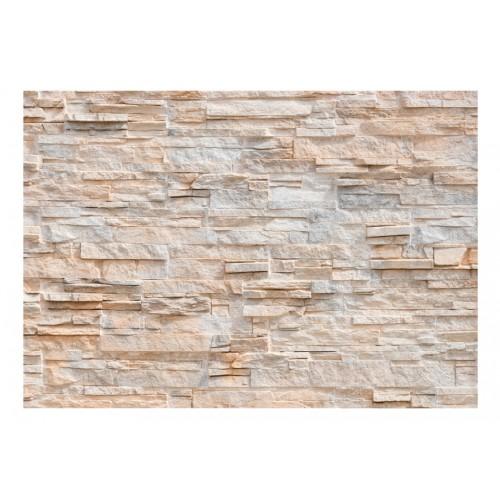 Fotomurale - Soffisticazione di pietra - Quadri e decorazioni