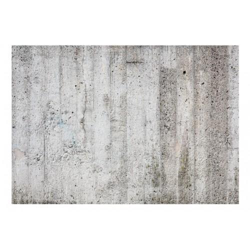 Fotomurale - Grey Emperor - Quadri e decorazioni