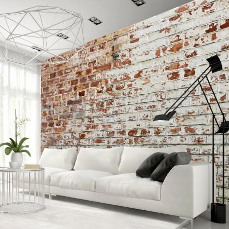 Fotomurale - Walls of Memory - Quadri e decorazioni